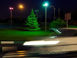 Christmas tree - Pedestrian lane - Motion blur