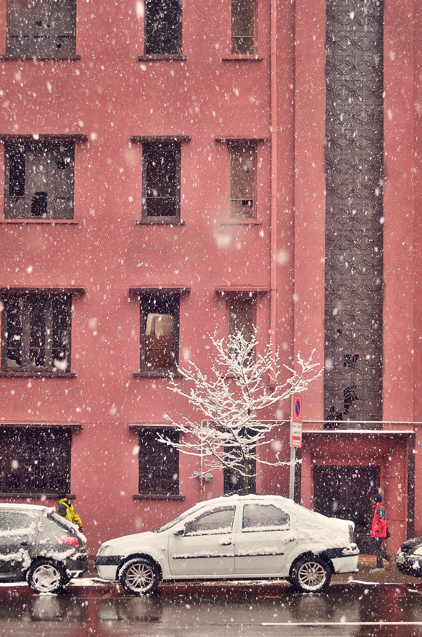 Snowy day in Tehran, Snow on tree branches, red building