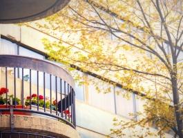 Flower boxes on balcony in Ekbatan