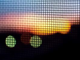 Sunset behind mesh