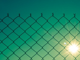 fence and world