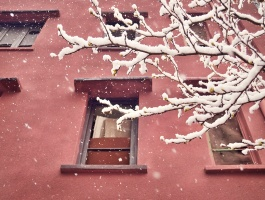 happy winter, first day of winter